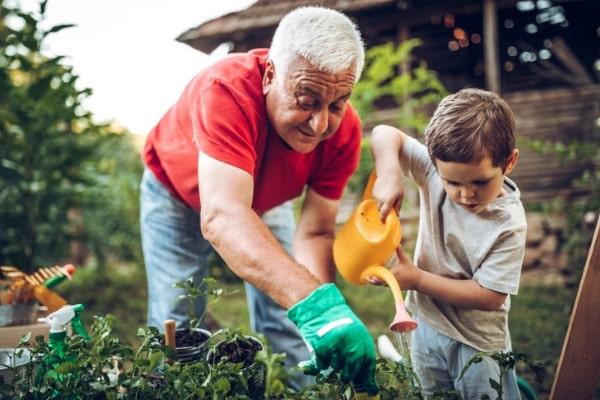 starting a garden is a great summer activity